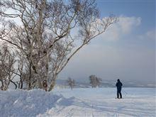 温かいニセコでスキー