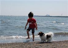 そういえば最近行ってない葛西臨海公園。