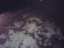 大雪らしい