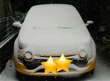 ほんとに雪だ~   w(゜o゜)w