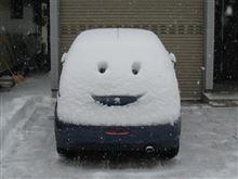 積雪20cm超!朝から雪掻き…