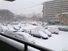 関東は10年に1度の大雪・・・