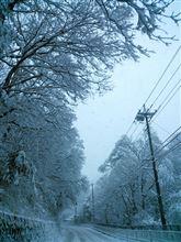 大雪警報!川奈の風景