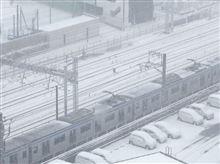 大雪の一日。