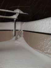 大雪です\(◎o◎)/