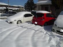 今日は雪かき
