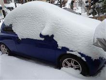 大雪そして雪かき