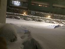 雪凄かったね~