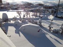 平成26年2月8日(土)河口湖地方 大雪