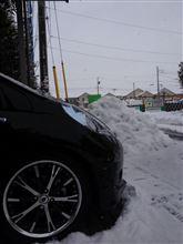 また・・・雪orz
