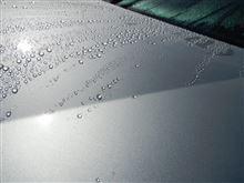 VW-211(05)  洗車 ・・・o(▼_▼θ