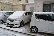 大阪でも積雪