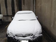 雪で・・・