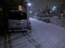 雪が凄いので、帰ってきました。。。