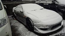。゚※゚。゚ 二週連続の大雪 ゚。゚※。