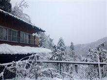 昨日に増してのべた雪