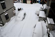 今週末も大雪により・・・