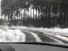 また雪ですネ~