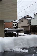 雪かき・・・