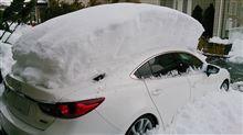 またまた大雪2