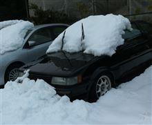 大雪 倍増・・・。