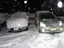 2週連続の大雪とは・・・(--,)