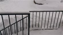 帰る日に大雪