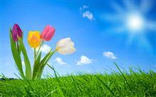「春の中部オフ」