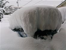 2014.2.18.今年の雪は、、、とIKEA