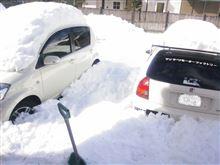 過酷な雪かき