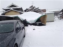 大雪の被害の片付け