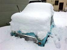 全部雪のせいだ!。