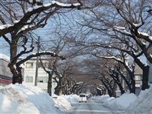 青森市の冬事情。 意外と、事故が多い気がした・・・  その理由とは ?