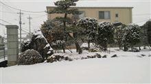 「雪」置き場での、セリカ達。よく、「オフ」やった・・・・・・♪