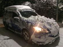 [東京にも2週連続で大雪] その3・雪道での意外な落とし物