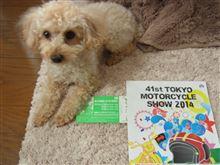 今年も行きます♪ 東京モーターサイクルショー