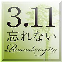 3.11 3year