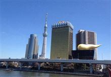今日は東京名所観光でした
