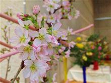 春の訪れに芸術鑑賞~♪