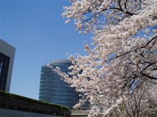 待ち遠しい春の日~!!