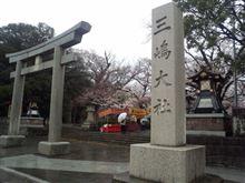 桜が綺麗に咲いてます(^o^)