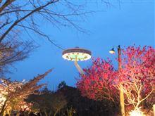 謎の円盤UFO現る (´・ω・`)