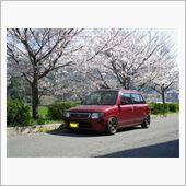 2014_桜