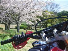 XRで春収穫