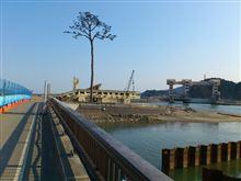 東日本大震災の遺構保存を考える③ 陸前高田市 奇跡の一本松