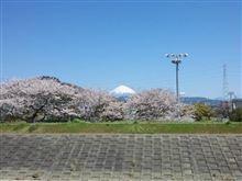 桜と風景を撮りに