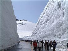 春の立山 雪の大谷が見たくて