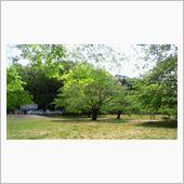 定光寺公園と定光寺