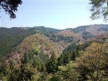 吉野山散策。