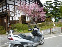 美ヶ原高原その7帰還編(大袈裟)